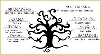 arbol-YAMAS-NIYAMAS